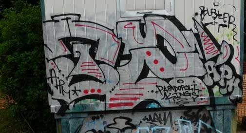 Graffittari imbrattano i muri del parco Papadopoli: raccolta firme per le telecamere