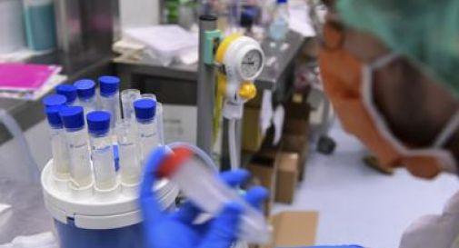 Coronavirus, al Regno Unito prime 30 mln dosi del vaccino italo-inglese